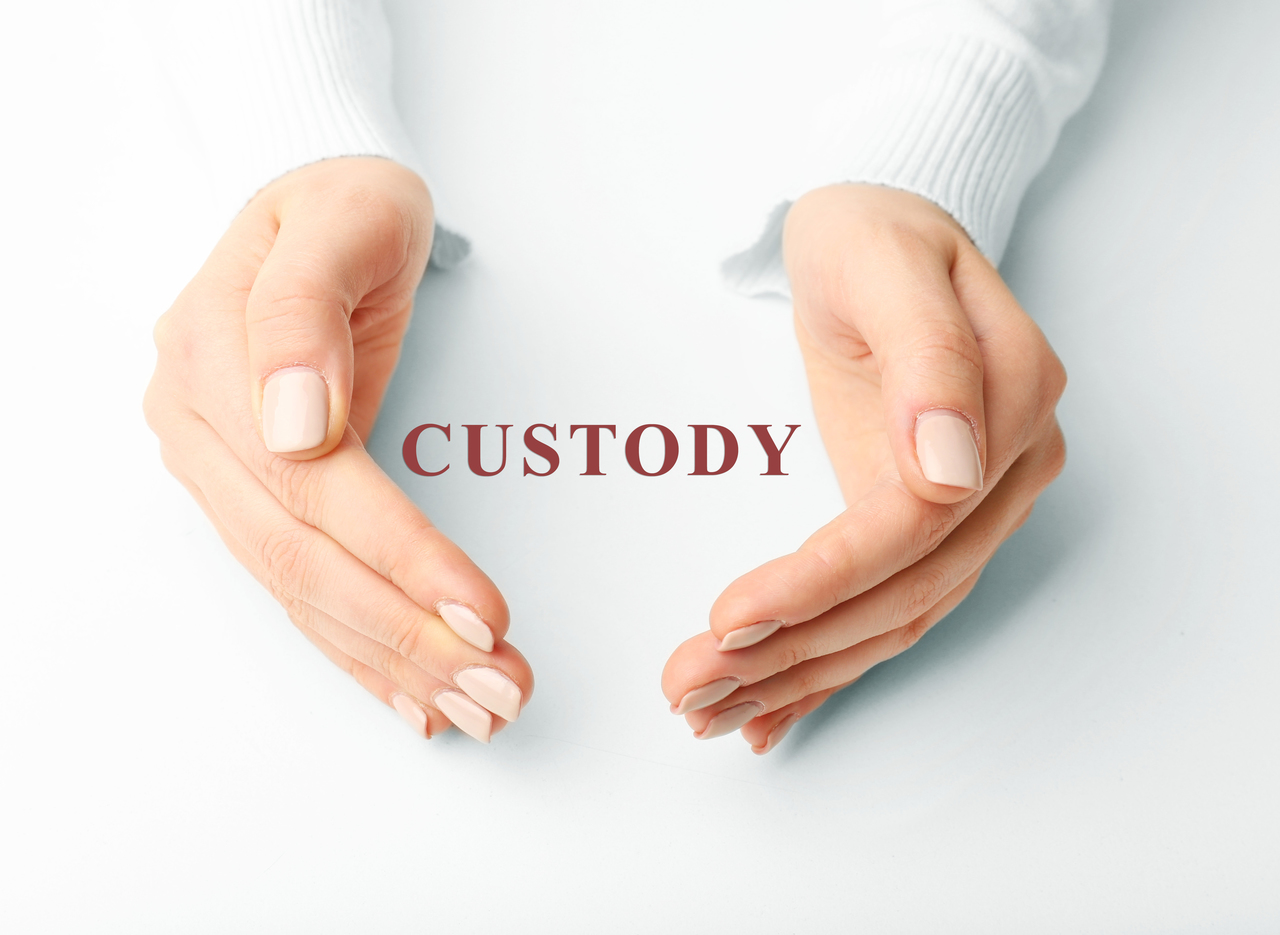 Custody Attorney Griffin GA